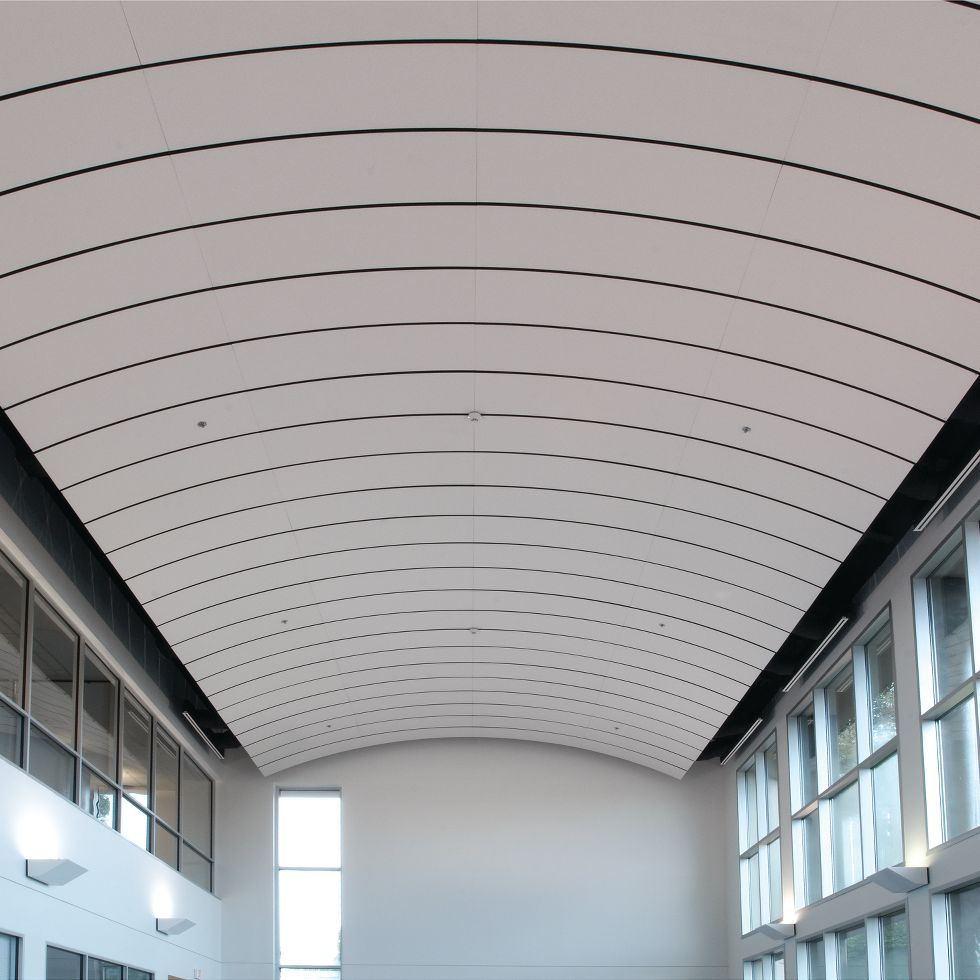 Curved Metal Ceiling Panels Taraba Home Review