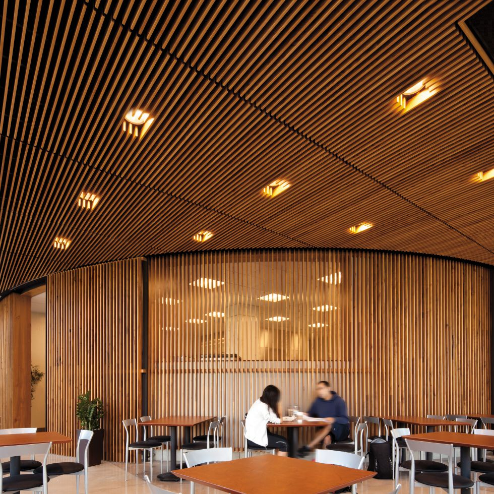 17 Wood Ceilings Planks Panels