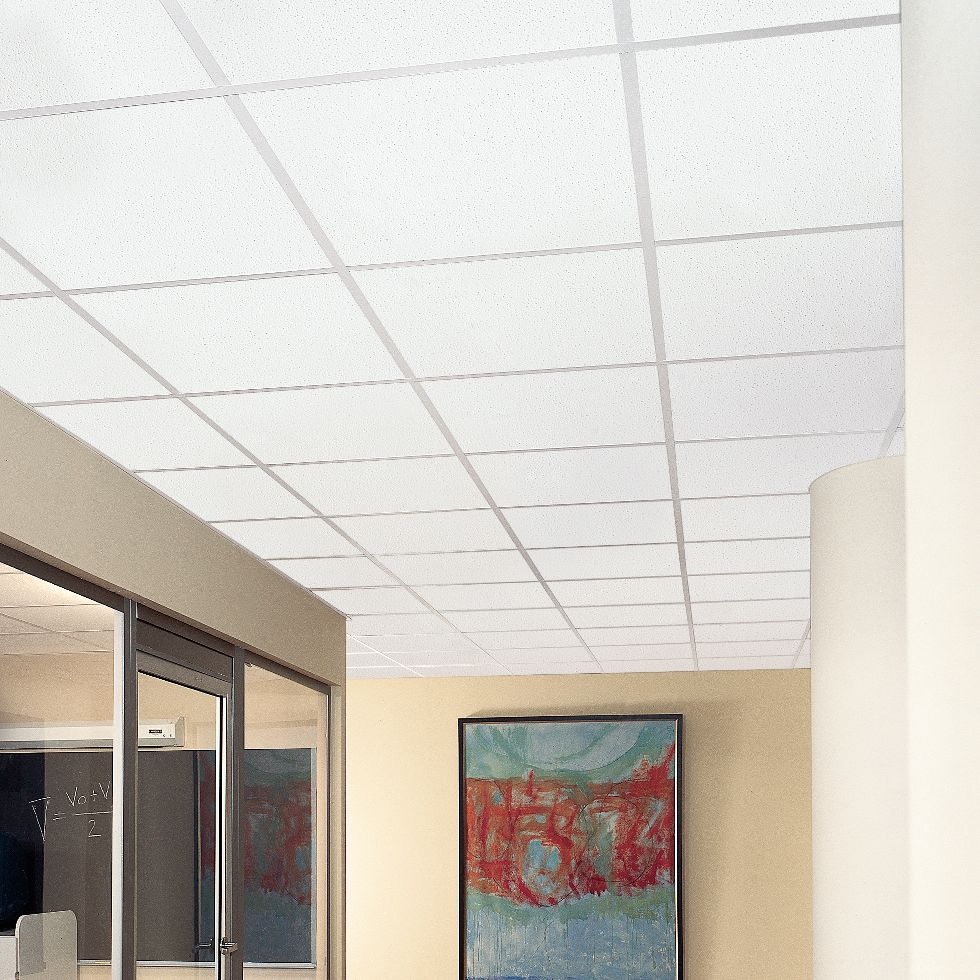Fine fissured lines armstrong ceiling solutions commercial more colors available dailygadgetfo Images