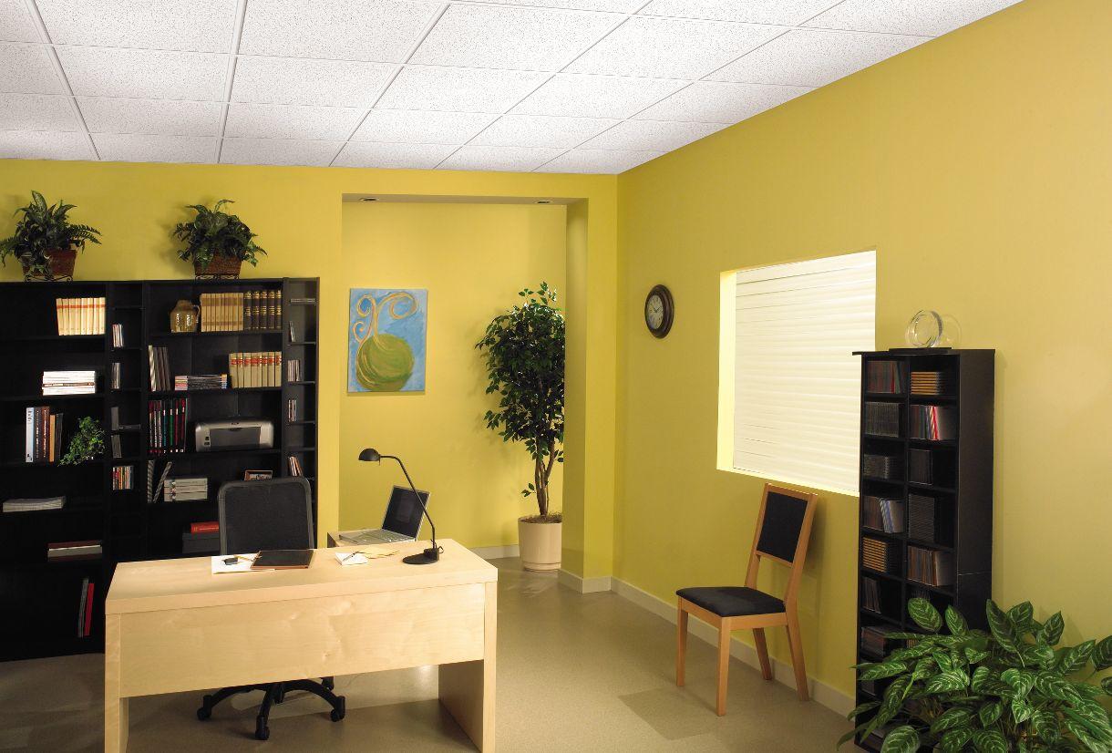 Textured Look Ceilings - 928 | Armstrong Ceilings Residential