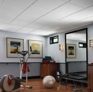 Basement Home Gym Ceiling Design Gallery  Armstrong Ceilings Residential