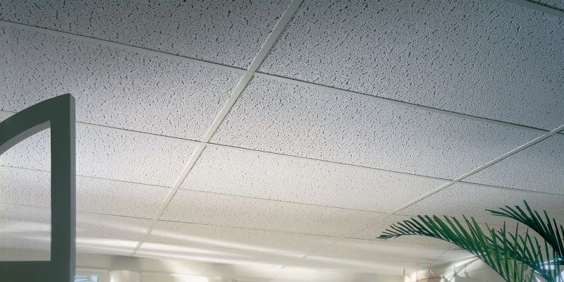 Textured Look Ceilings 942