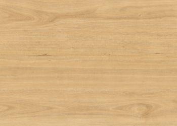 Luxury Vinyl Plank & Tile - Tasmanian Oak