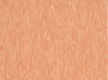 Cantaloupe Z1867