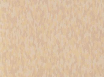 Sandstone Beige 51954
