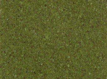 Olive 54831
