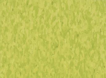 Standard Excelon Imperial Texture Kickin' Kiwi