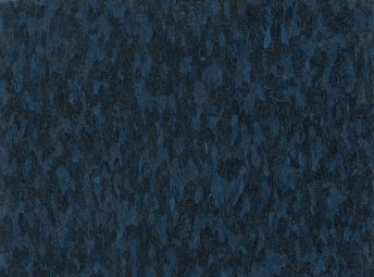 Standard Excelon Imperial Texture Go Blue