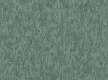 Eucalyptus 57547