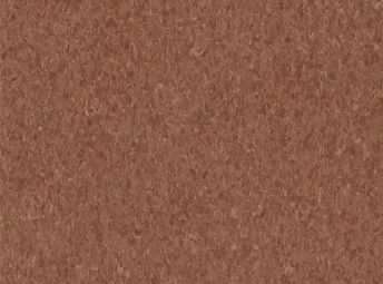 Madagascar Cinnamon 5C232