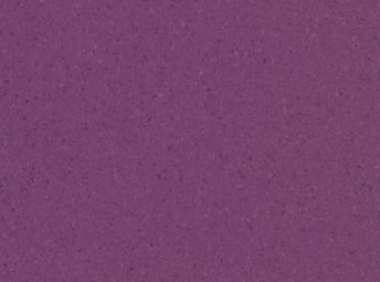 Accolade Plus Riverina Plum