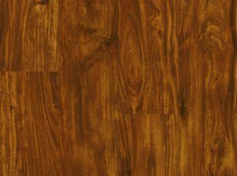Acacia Cinnabar A6408