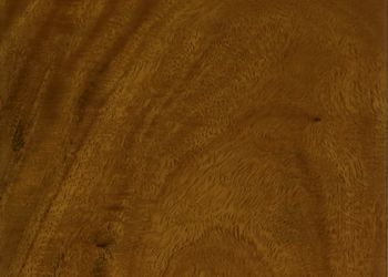 Amendoim Luxury Vinyl Tile - Chestnut