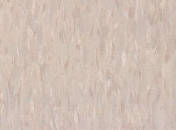 Hazelnut 51905