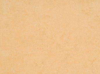 玉米黄 125-098