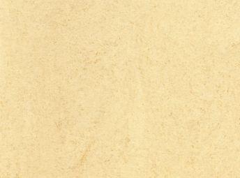蕉白 125-145