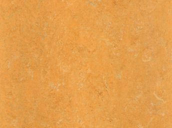 柠橘 125-173