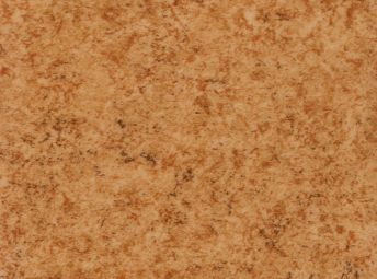 Cinnamon K6200-13