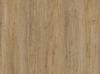 New Natural Acacia WO102