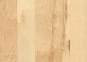 Maple Solid Hardwood - Natural