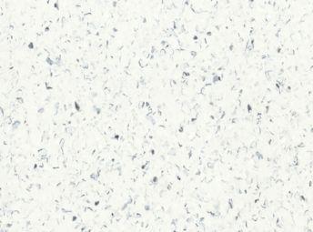 Vermont White 5B504181