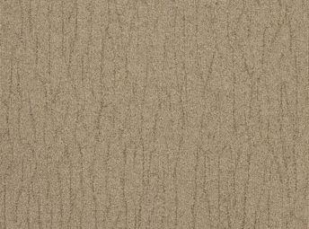 Birch C00D0821-03