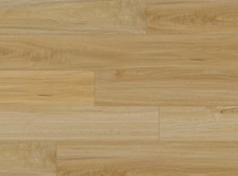 Coastal Oak 1P400954