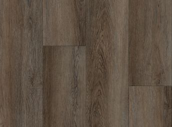 Byrds巢橡树棕色Sparrow F0202