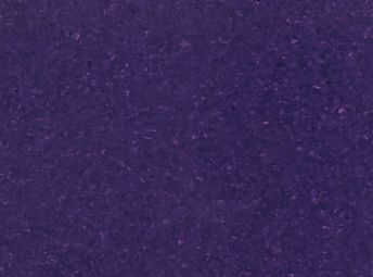 Hydrangea* 4J105428