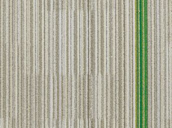 Greenery C00K0811-01