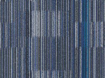 Blue Iris C00K0811-08