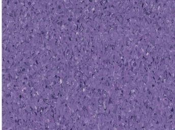Hyacinth 5A123008