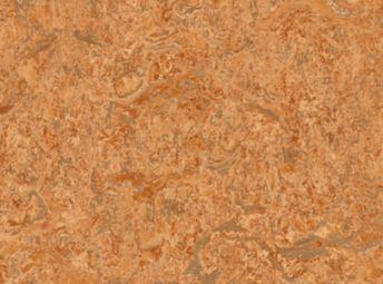 Montana Orange K7181-81
