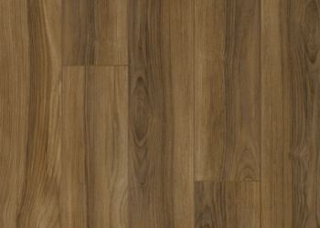 Stratifié - Exotic Olive Ash