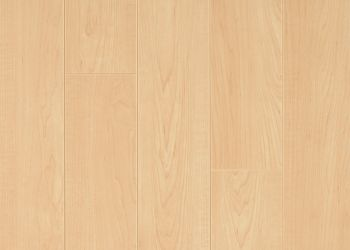 Laminate - American Maple