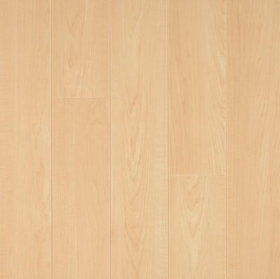 laminate american maple