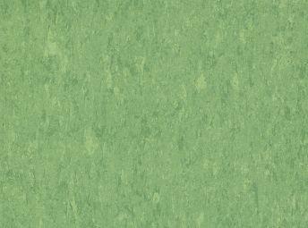 Guacamole LT025
