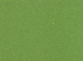 Lime Grass* 4J105408