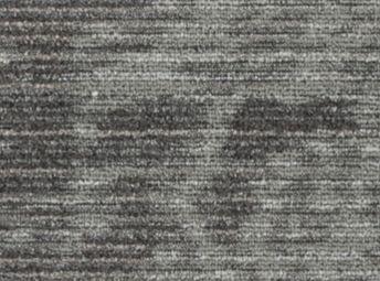 Amphibolite C00F0221-02