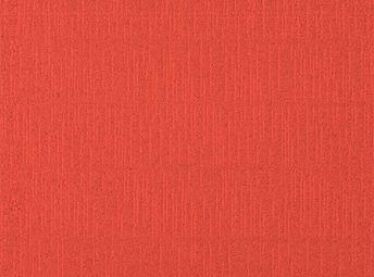 Tangerine C00B0811-02