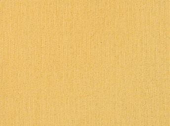 Golden Sun C00B0811-07