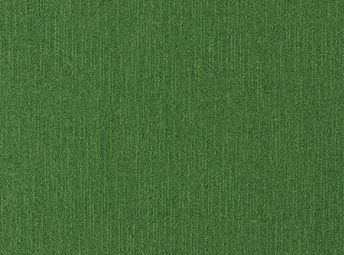 Forest Green C00B0811-10