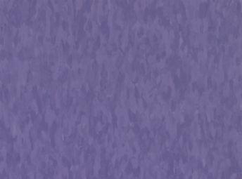 Migrations BBT Violet Grape