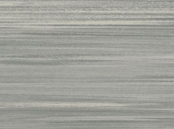 Warm Gray T3608