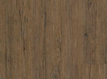 Driftwood Bronze TP063