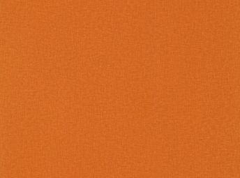 耀橙 EC006