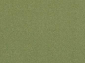 荷绿 EC007