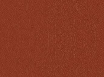Bold Orange K2001-01