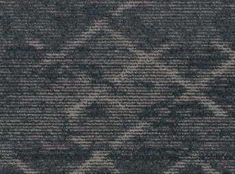 Aterrimus C00Q0211-06