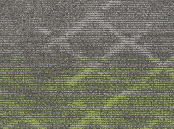 Bio Lime C00Q0211-07
